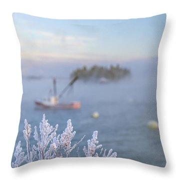 Where Morning Glories Grow Throw Pillow
