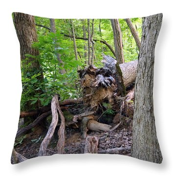 Throw Pillow featuring the photograph Where Once She Stood by Deborah Fay