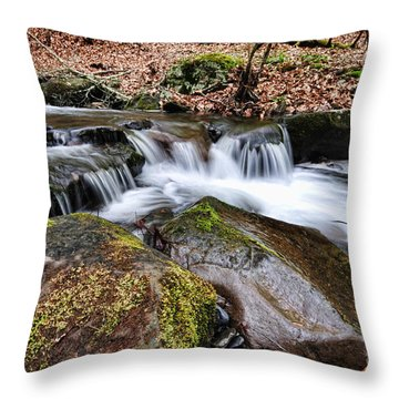 Where The River Flows Throw Pillow by Paul Ward