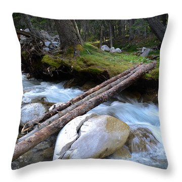 Where The Water Flows Throw Pillow by Dwayne Schnell