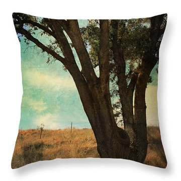 Where We'll Meet Throw Pillow by Laurie Search