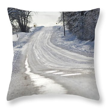Throw Pillow featuring the photograph Where Will The Road Take You? by Dacia Doroff