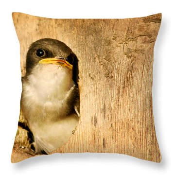 Wheres Dinner Throw Pillow