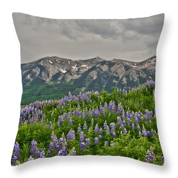 Whetstone Sunset Throw Pillow