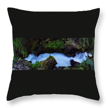 Throw Pillow featuring the photograph Which Way by David Andersen