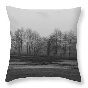 Whidbey Island Meadow In Fog Throw Pillow