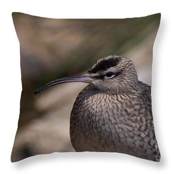 Throw Pillow featuring the photograph Whimbrel by Bianca Nadeau
