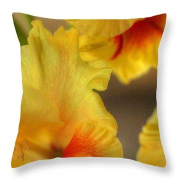 Whimsy Throw Pillow by Deborah  Crew-Johnson