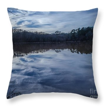 Whipped Cream Reflection Throw Pillow by Donna Brown