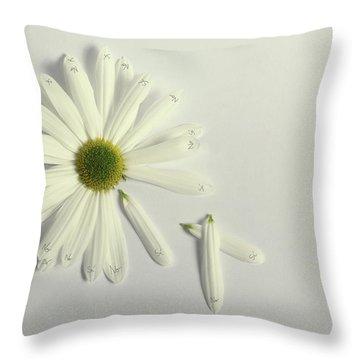 Choosing Throw Pillows