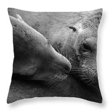 Whisker Love Throw Pillow