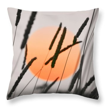 Throw Pillow featuring the photograph Whispers by Charlotte Schafer