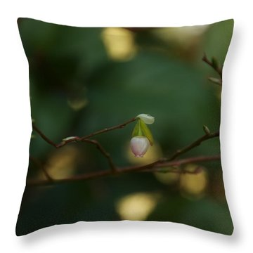 Throw Pillow featuring the photograph Whispers Of Spring In The Tranquil Forest by Lisa Knechtel