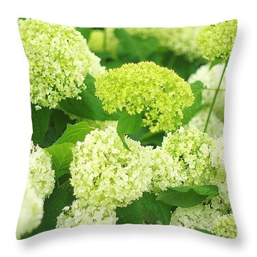 Throw Pillow featuring the photograph White And Green Hydrangea Flowers by Suzanne Powers