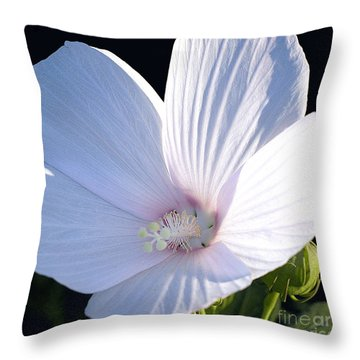 White And Pink Hollyhock  Throw Pillow