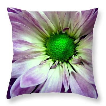 White And Purple Daisy Throw Pillow by Danielle  Parent