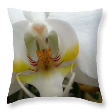 White And Yellow Orchid Throw Pillow