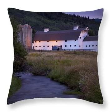 Throw Pillow featuring the photograph White Barn by Brian Jannsen
