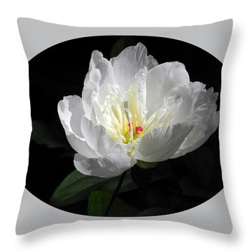 White Beauty Throw Pillow by Yue Wang