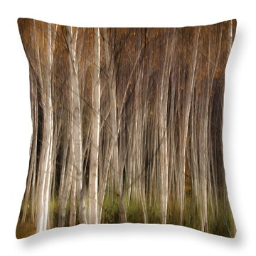 White Birch Abstract Throw Pillow by John Vose