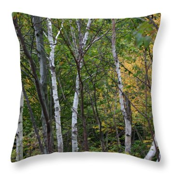 White Birches In The Woods Throw Pillow by Denyse Duhaime