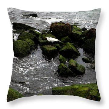 White Bird On Green Stone Throw Pillow