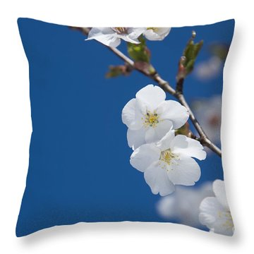 White Blossom Throw Pillow by Anne Gilbert