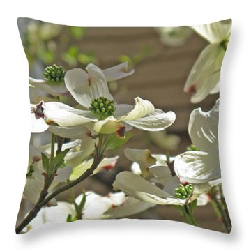 White Blossoms Throw Pillow by Barbara McDevitt