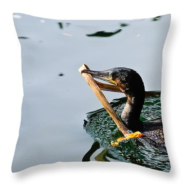 White Breasted Cormorant Throw Pillow by Bonnie Fink