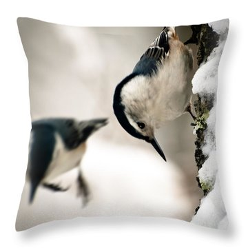 White Breasted Nuthatch In The Snow Throw Pillow by Bob Orsillo
