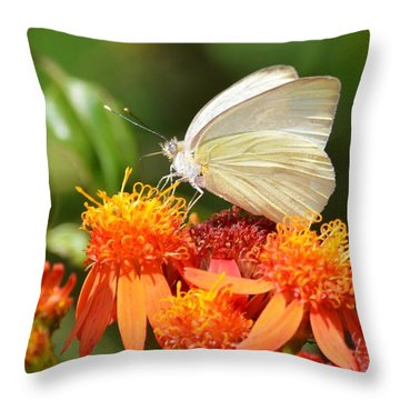 White Butterfly On Mexican Flame Throw Pillow