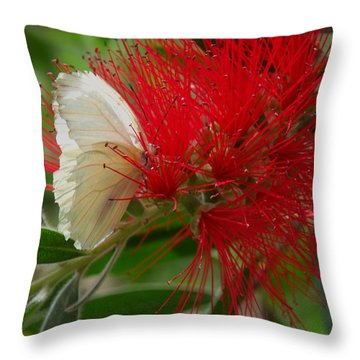 White Butterfly Throw Pillow by Mistys DesertSerenity