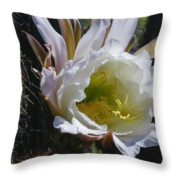 White Cactus Bloom Throw Pillow