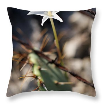 Throw Pillow featuring the photograph White Cactus Flower by Erika Weber