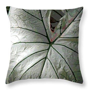 White Caladium Throw Pillow by Suzanne Gaff
