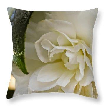 White Camellia 1 Throw Pillow
