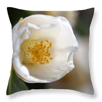 White Camellia  Throw Pillow by Joy Watson