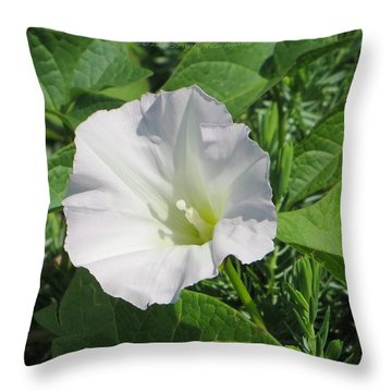White Candour Throw Pillow by Sonali Gangane