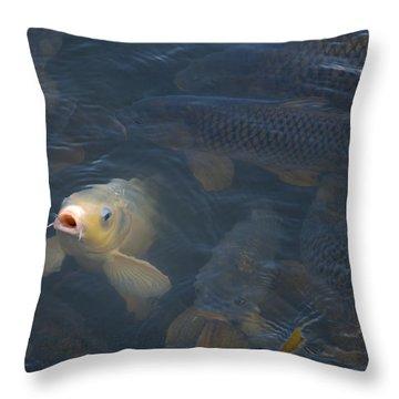 White Carp In The Lake Throw Pillow by Chris Flees