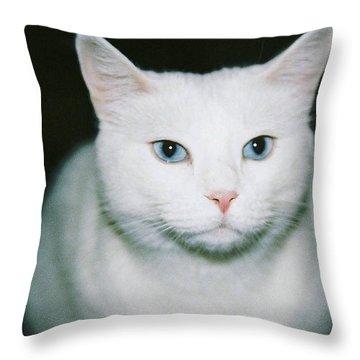 White Cat Throw Pillow by Ellen O'Reilly