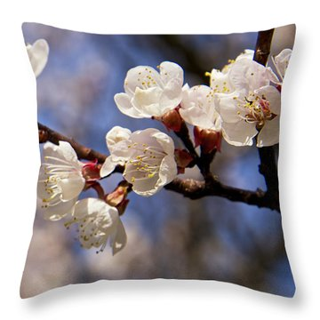White Cherry Blossoms Throw Pillow by Mary Lee Dereske