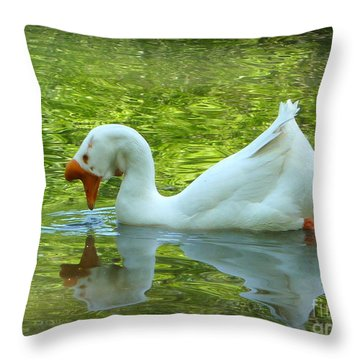 White Chinese Goose Curtsy  Throw Pillow