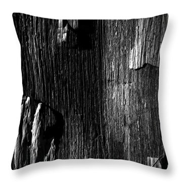 White Chip Paint On The Old Red Barn Throw Pillow by Bob Orsillo