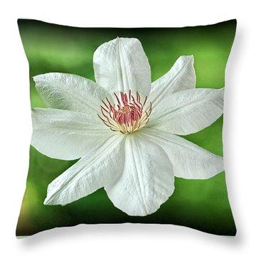 White Clematis Throw Pillow by Richard Farrington