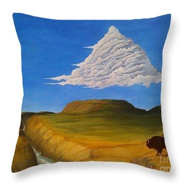 White Cloud Throw Pillow by John Lyes