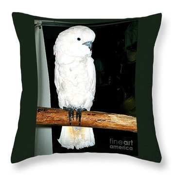 White Cockatiel-loreto Mx. Throw Pillow