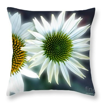 White Conehead Daisy Throw Pillow by Arlene Carmel