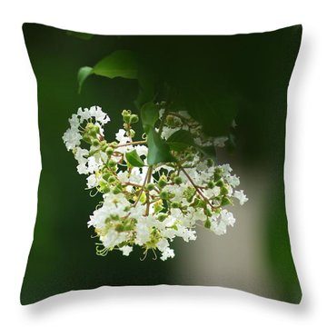 Throw Pillow featuring the photograph White Crepe Myrtle Blossom by Suzanne Powers