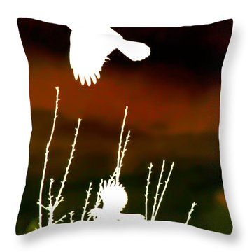 White Crow And The Bluejay Throw Pillow
