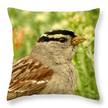 Throw Pillow featuring the photograph White Crowned Sparrow Portrait by Bob and Jan Shriner